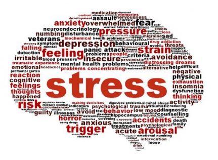 espace de thérapies émotionnelles nicole pierret la neurobiologie du stress.JPG