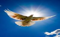 SPIRITUALITE AMOUR ET VIE