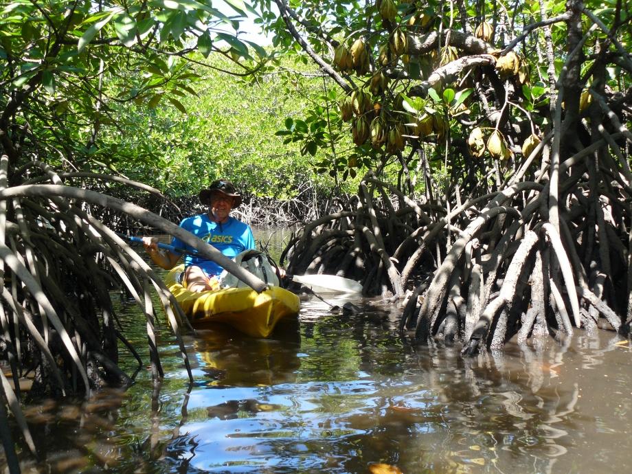 trip philippines 2012 431.JPG