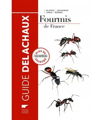 guide-delachaux-fourmis-de-france-plus-de-100-especes-decrites.jpg
