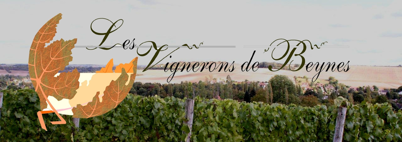 vigneronsdebeynes.blog4ever.com
