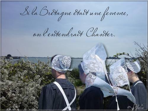 Citation si la Bretagne.jpg