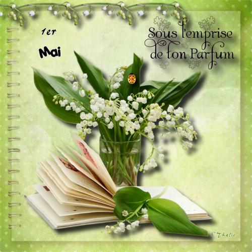 message bouquet muget mai 2014.png