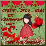 avatar blog cerise deco.jpg