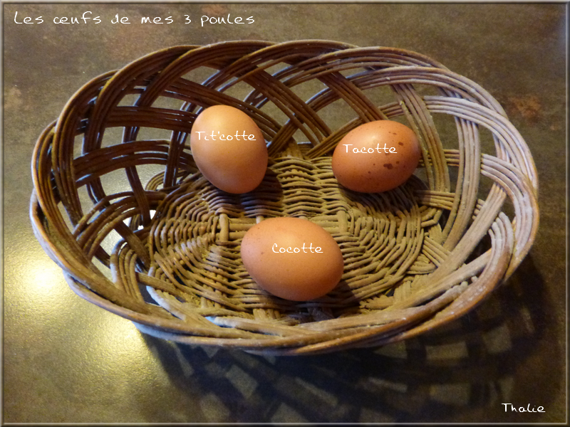 mes oeufs 27 mars 2016.png