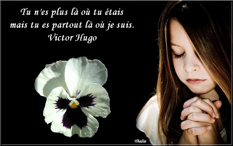 carte pour décès Papyclic.png