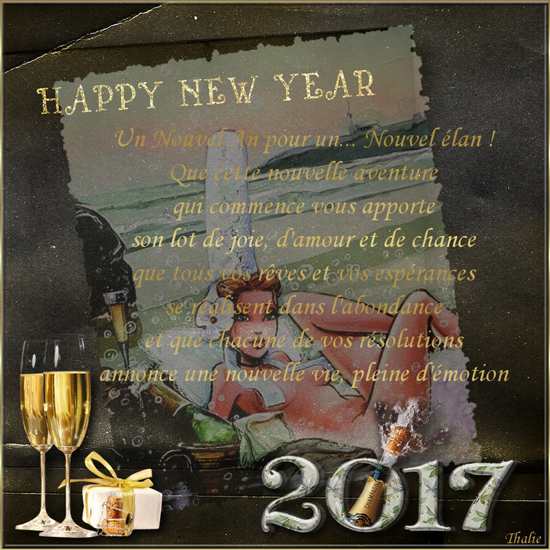 bonne année 2017 6.png