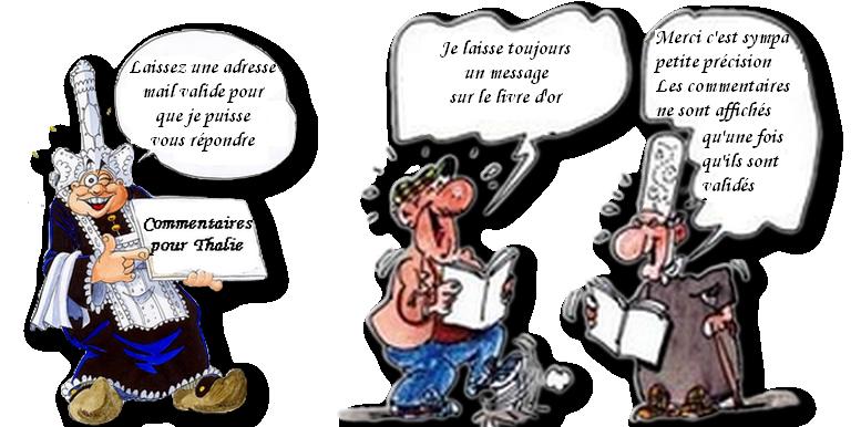 mes bretons livre d'or février 2017.png