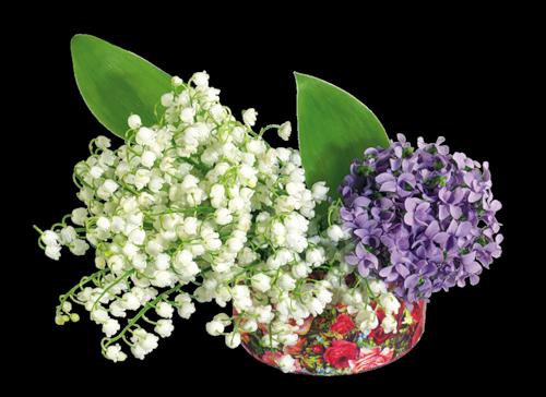 muguet violettes(cramag.bbactif).png