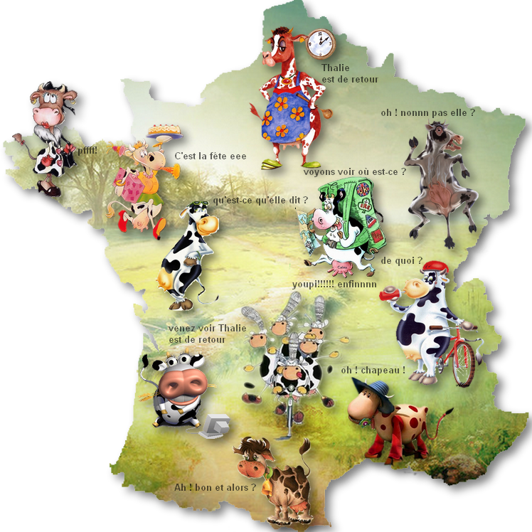 https://www.blog4ever-fichiers.com/2006/01/15379/carte-de-France-vaches-ombres-Thalie-Juillet-2015.png