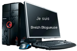 https://www.blog4ever-fichiers.com/2006/01/15379/ordi-breizh-blogueuse.png