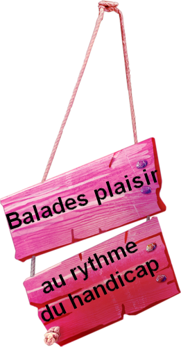 https://static.blog4ever.com/2006/01/15379/titre-balades-plaisir-etiquette-rose.png