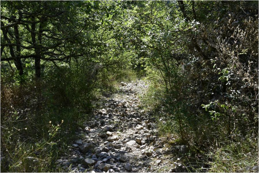 Sentier près de Lanas