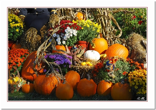 Préparation des fêtes d'Halloween au Canada