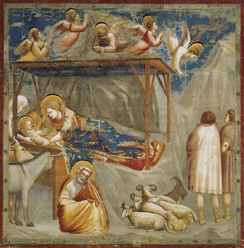 Naissance de Jésus - Giotto
