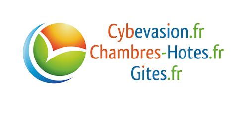 logo cybevasion.png