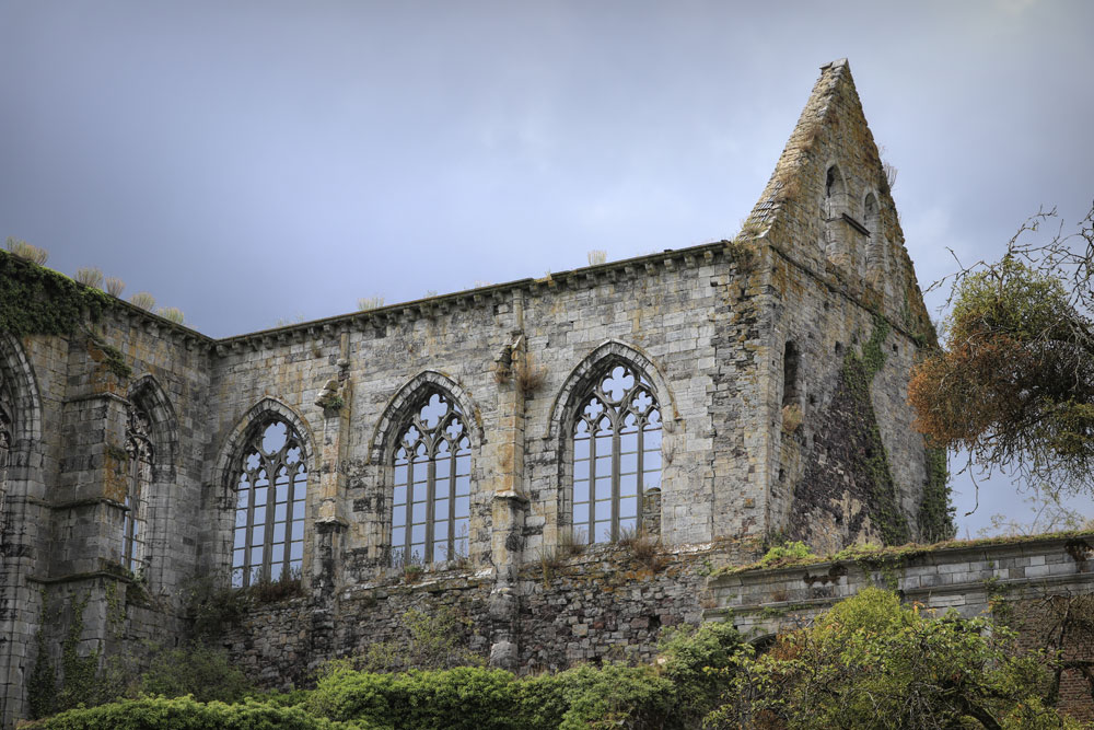transept-nordwww.jpg
