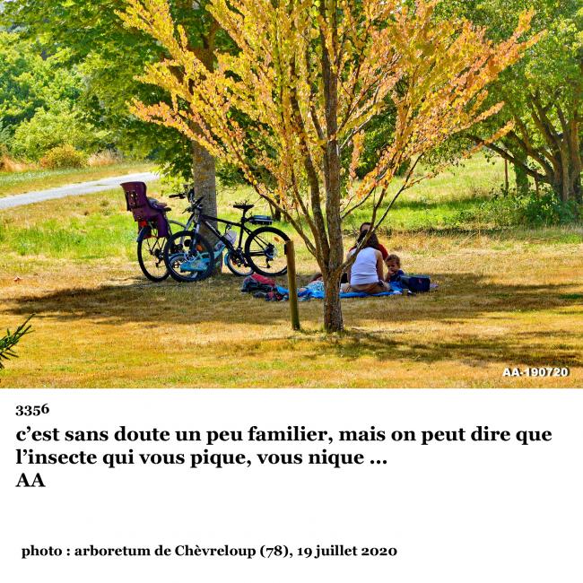 3356° photo clin d'oeil