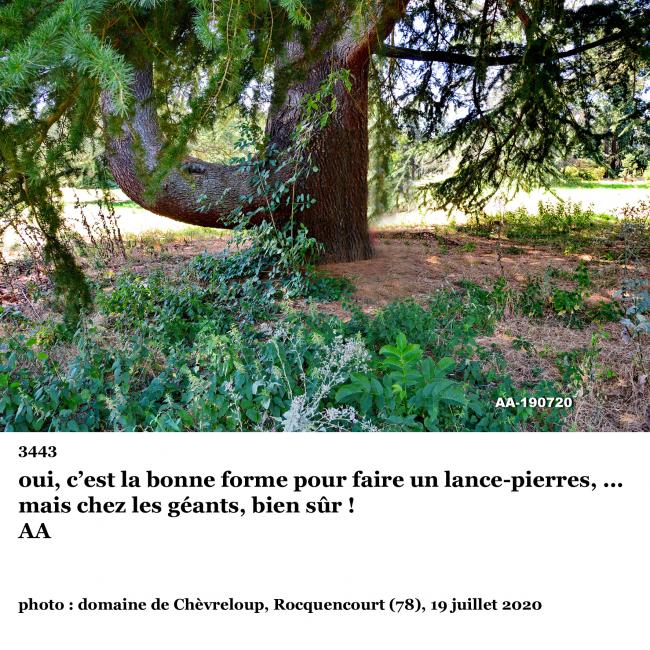 3443° photo clin d'oeil