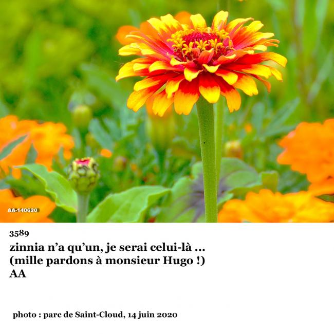 3589° photo clin d'œil