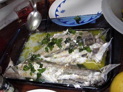 Encore du poissons