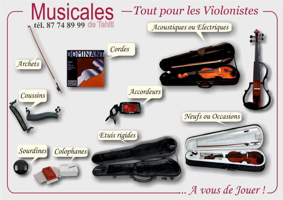 MDT FLYER VIOLONS 2017 FB (Copier).jpg
