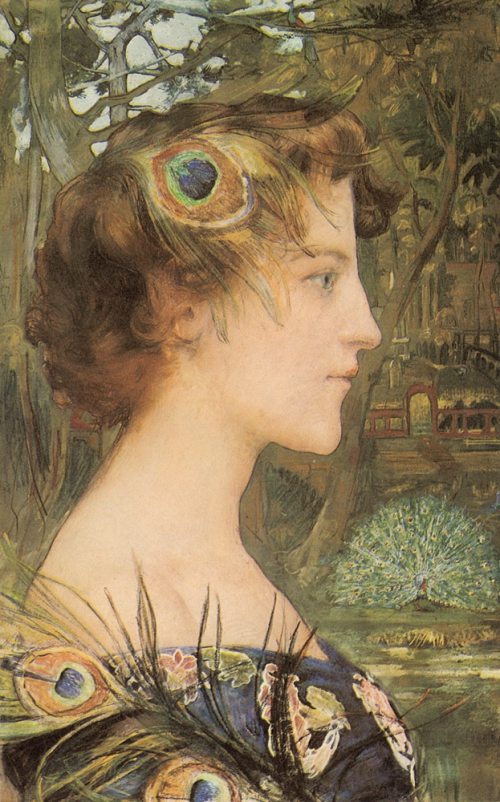 Edgar MAXENCE Peacock Profile 1896 largesizepaintings.jpg