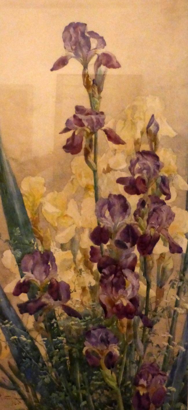 iris  muséee des beaux arts de nancy.JPG