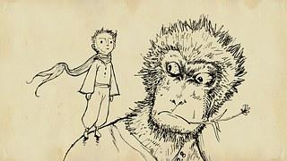 monkey-1179368__180.jpg