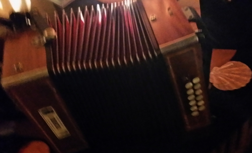 accordéon phot'à Sara Do.jpg