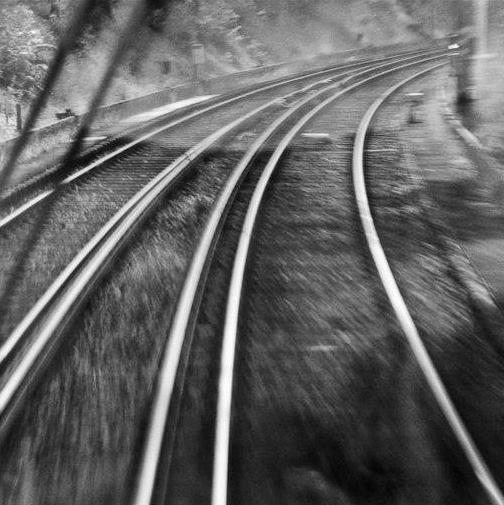 Rail Didier Péron.jpg