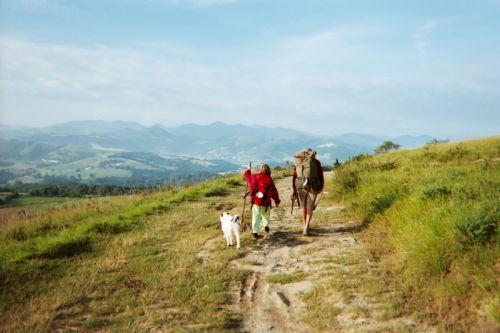 Jean-Louis, Kamo et Fripouille en route vers Ostabat