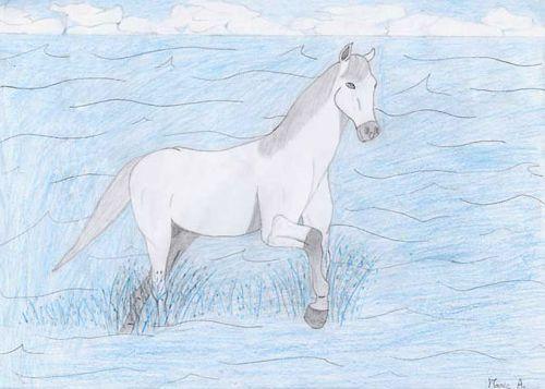 Un cheval dans la mer