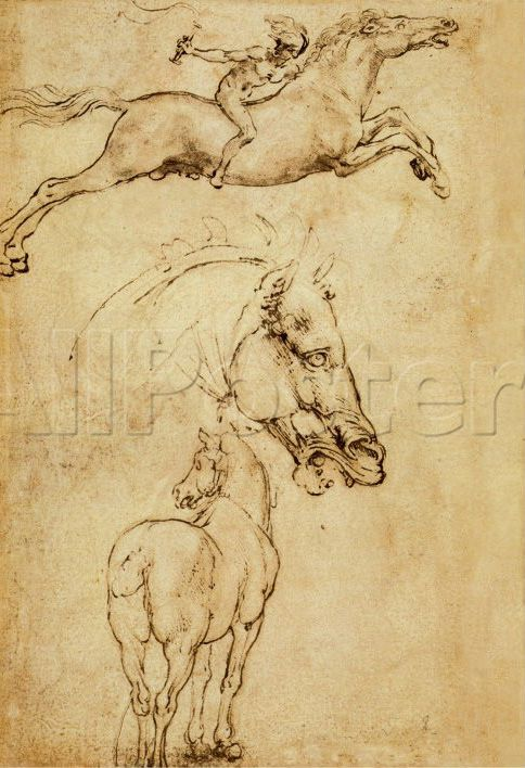 Esquisse d'un cheval de Leonardo Da Vinci