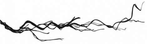 Branche3.jpg