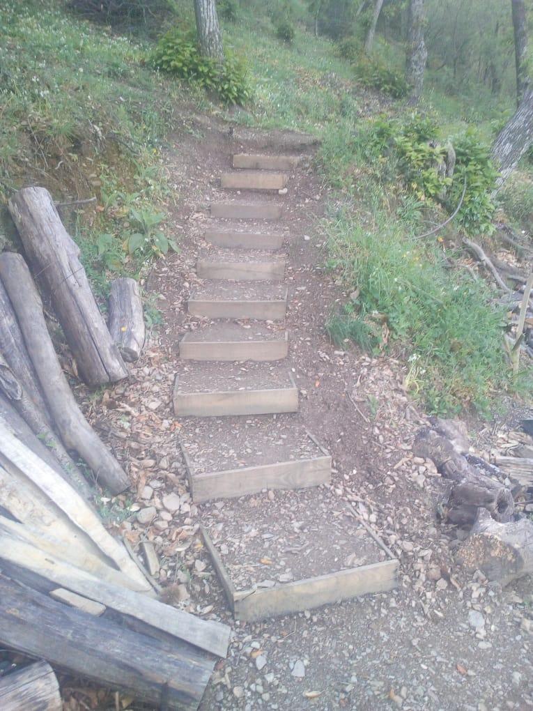Projet personnelle, construction d'un escalier pour rendre le lieu plus praticable.