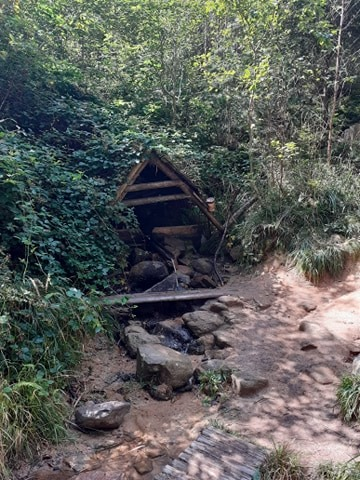 Nature près de Vysoké Myto