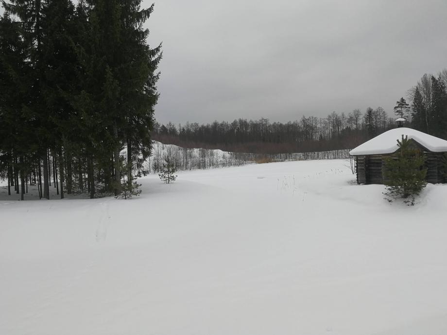 MIDTERM dans la foret estonienne a 2H de Tallinn a l'Est.