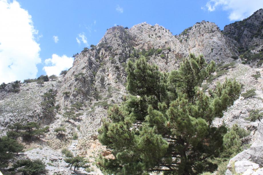 Zaros canyon