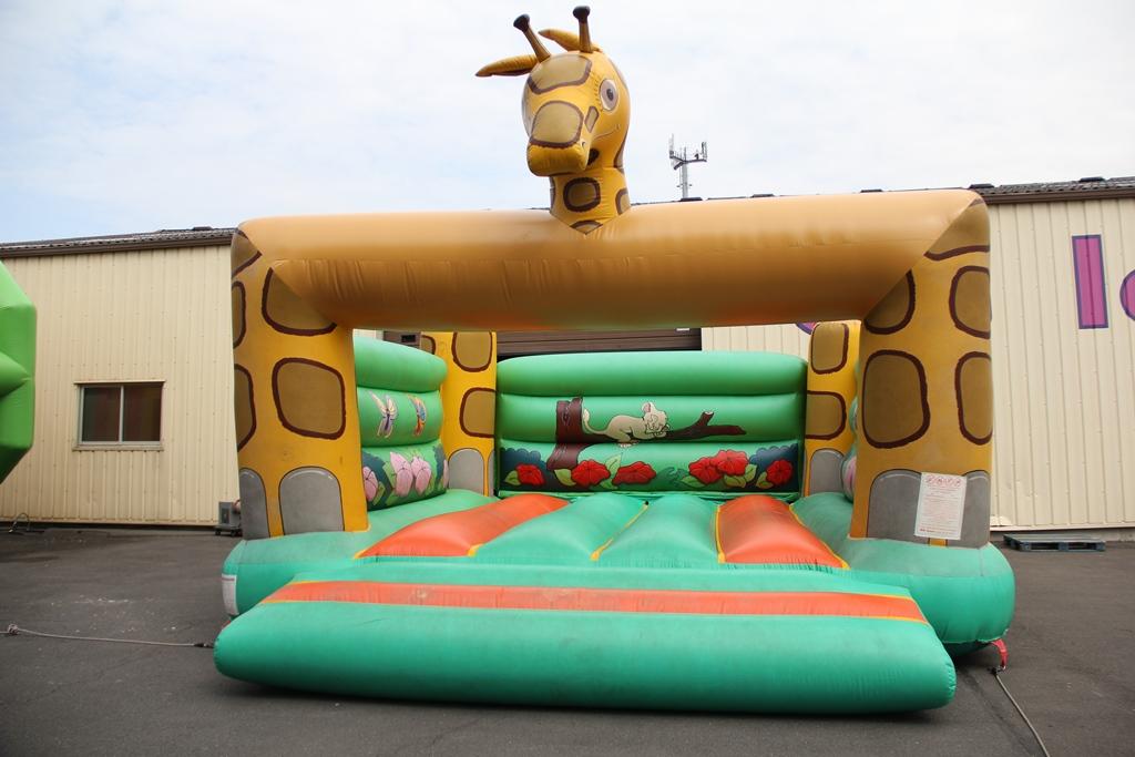 4174 Bumpa girafe (1).JPG