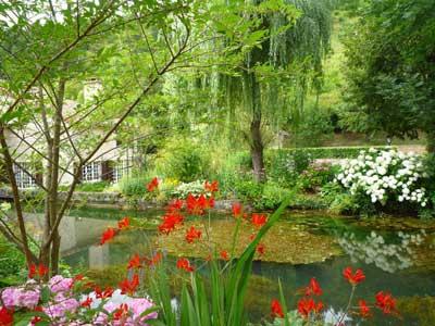 jardin-mon-moulin-449[1].jpg