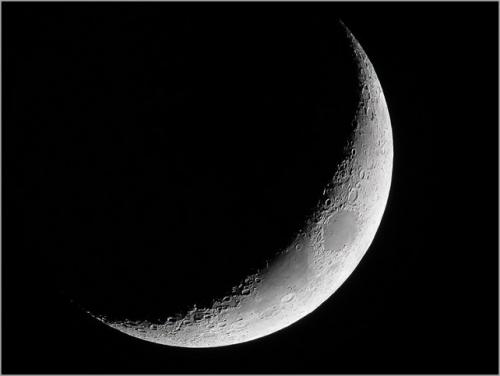 croissant_lune_4j_mto_d60-642x483[1].jpg