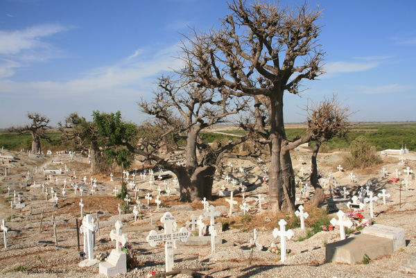 Cimetiere-en-afrique[1].jpg