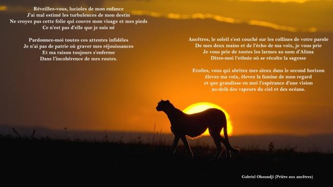 afrique guépard coucher poésie okoundji[1].jpg