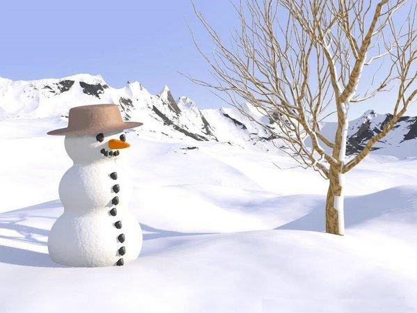 Bonhomme-de-neige[1].jpg