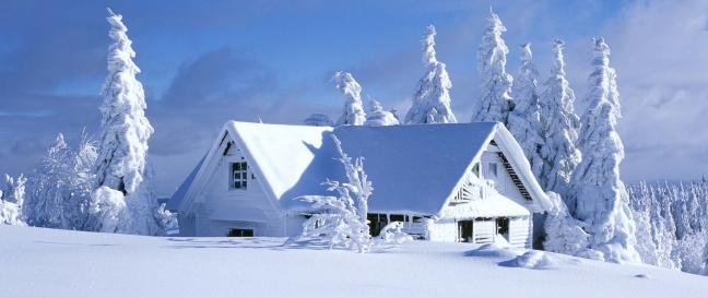 snowfolies[1].jpg