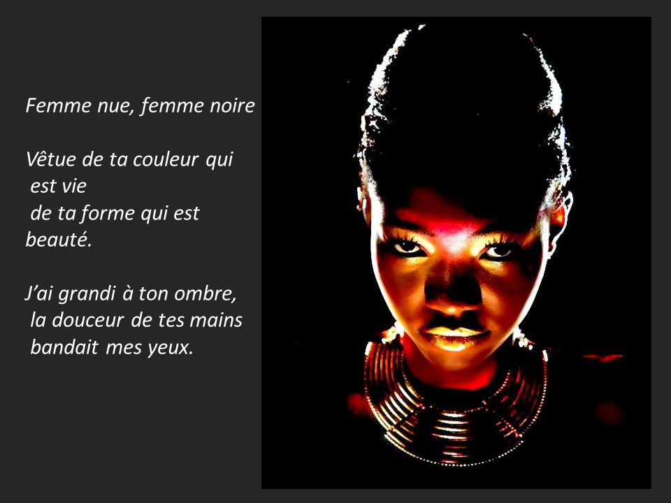 poeme-femme-noire-senghor-plumencre.jpg