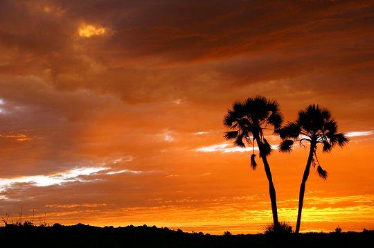 photo-photo-paysage-afrique-du-sud-7.jpg