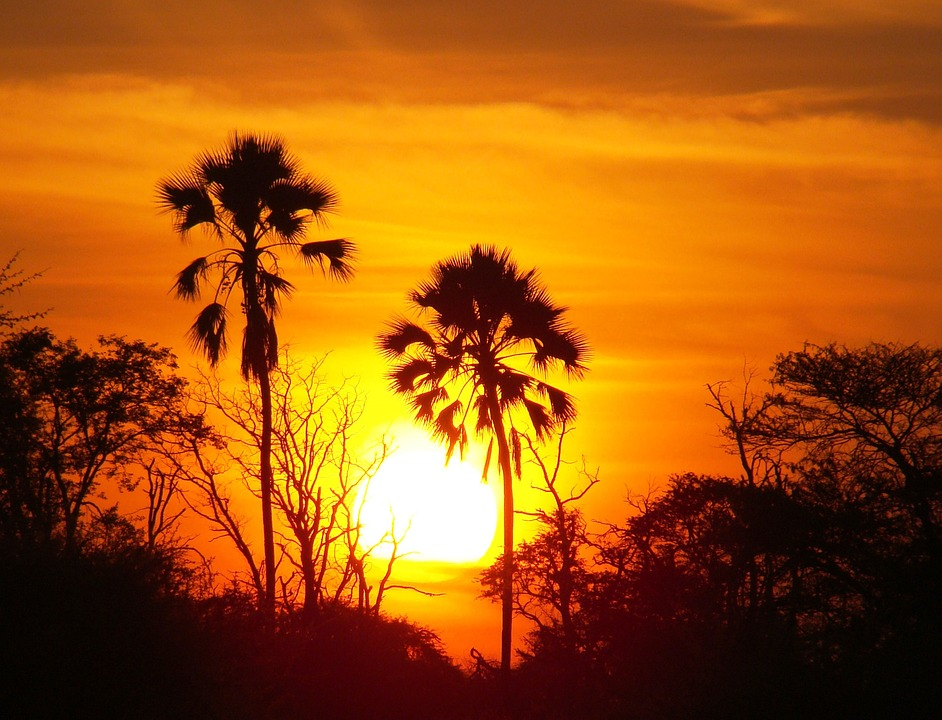 sunset-722510_960_720.jpg