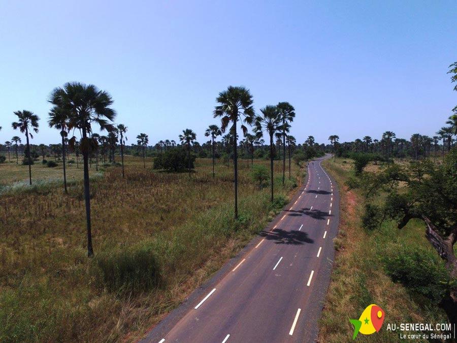 nouvel-route-foret-de-ronier-vers-samba-dia-_2_.jpg